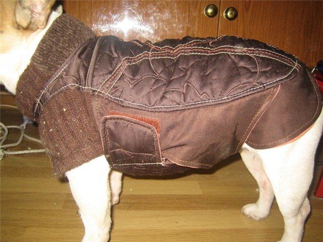 Выкройка тёплого жилета для собаки или кошки.