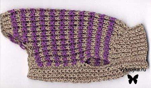 А вот свитер для собаки готов